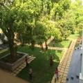 RCM Orchad garden