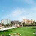 SGT University Gurgaon